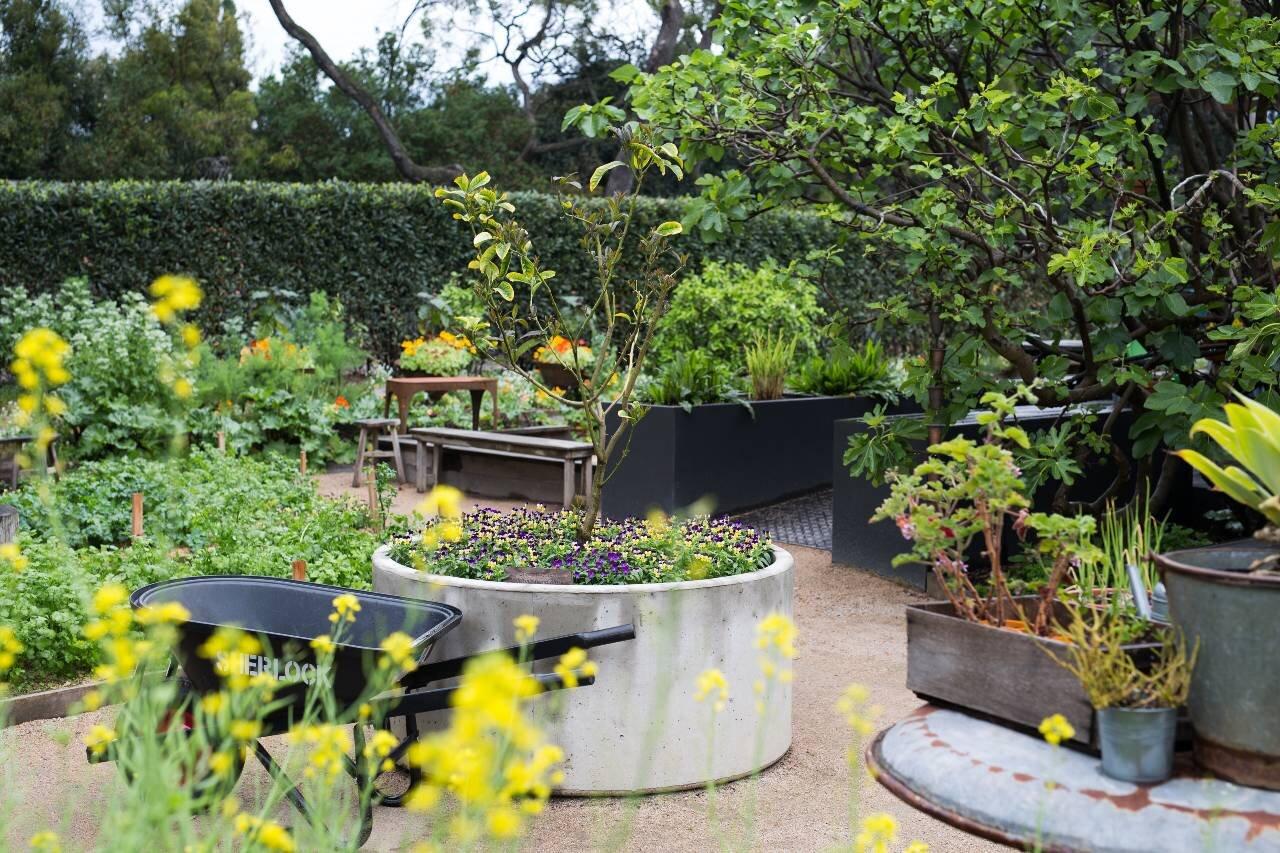 jardin tan