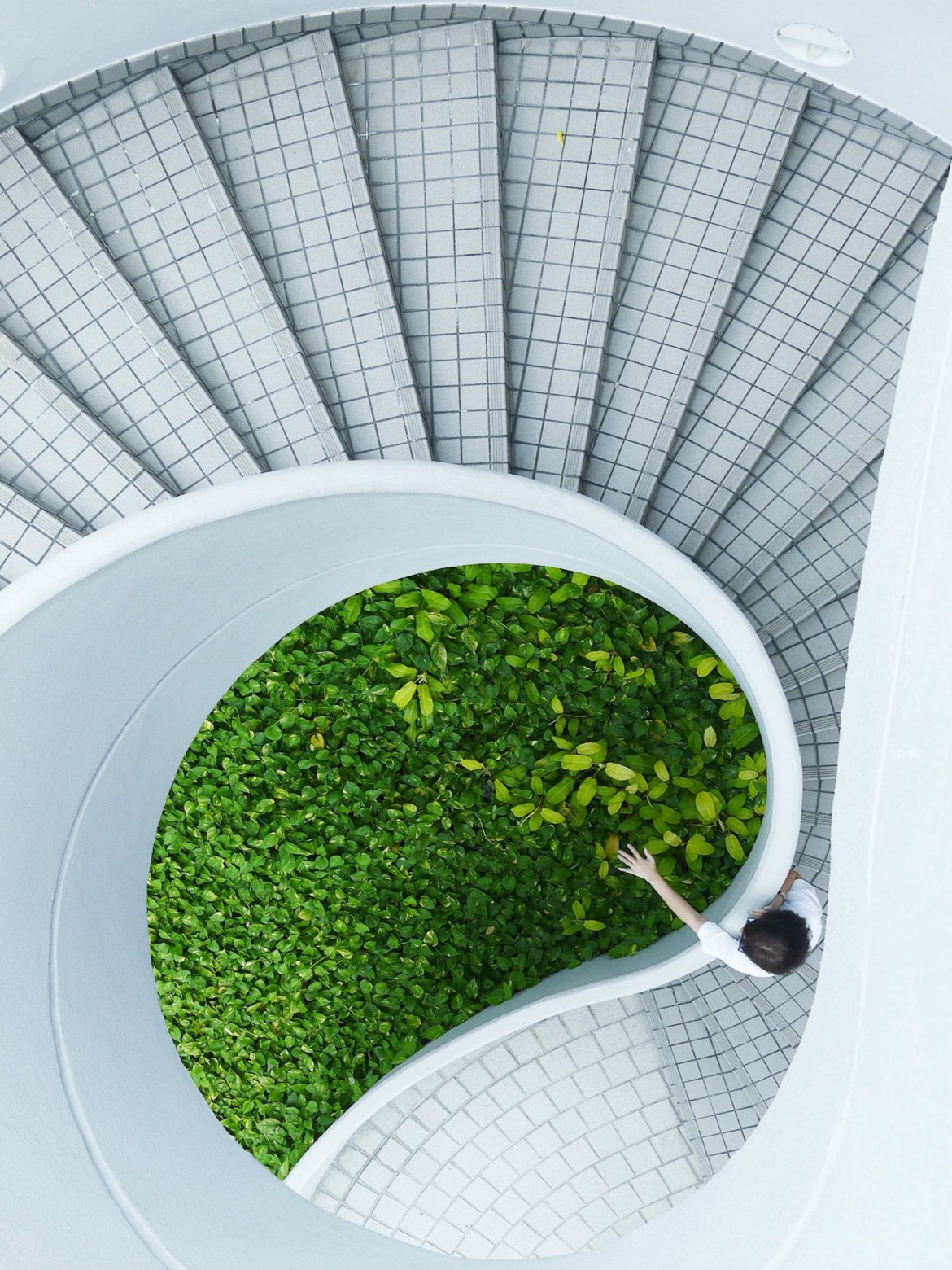 Go Green Even If You Rent -