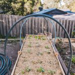 How To Build An Easy Diy Netting Structure For Your Raised Veggie Bed Connie And Luna