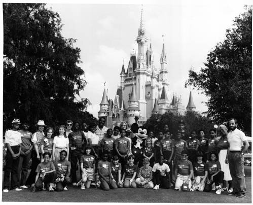 Image from Georgia State University Library. Click on the image to learn more.  - While its content business thrived during the pandemic, its theme parks and experiences segment did not. For the Fiscal Year 2020, Disney reported $16.50 billion in revenues, a decrease of 37.08% compared to the Fiscal Year 2019 and a 49% decrease in Attendance to Parks with 41% Hotel Occupancy [4]. To fully understand how significant a revenue source the Disney Parks are between 2017 and 2019, the Parks, Experiences, and Products averaged 40.34% of total revenues.