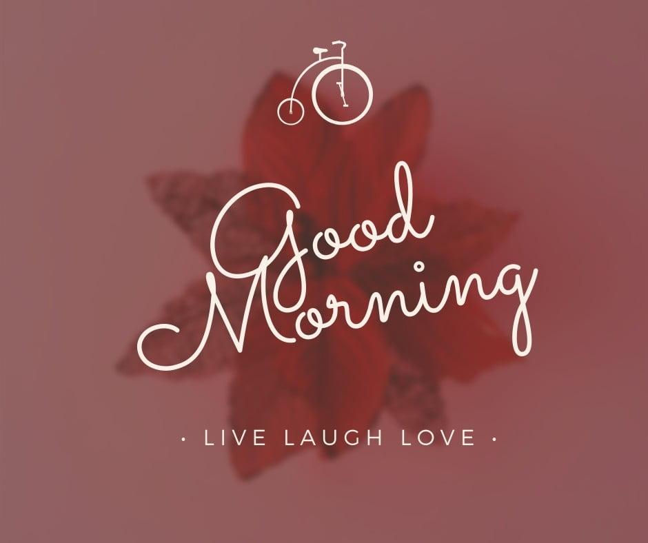 Good Morning Flower Image full HD free download.