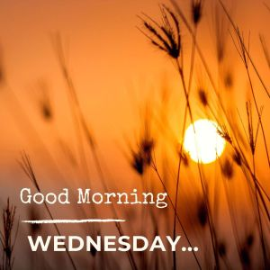 Good Morning Wednesday Image Hd 1 full HD free download.