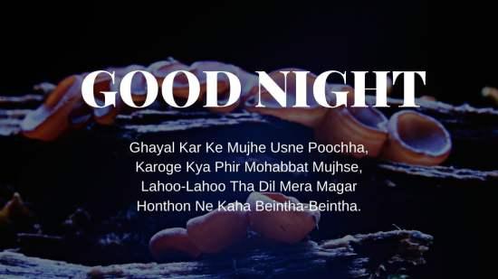 Good Night Shayari pic hd