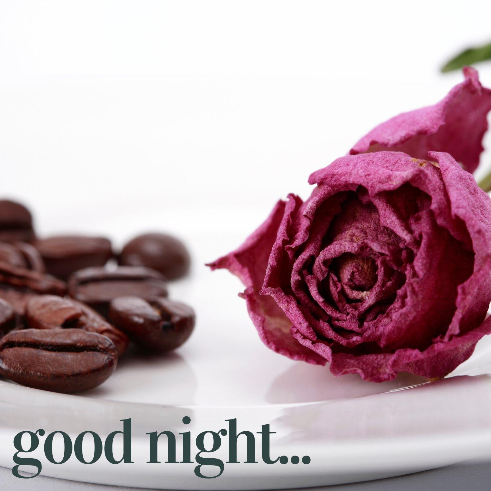 Good Night pic 1 full HD free download.