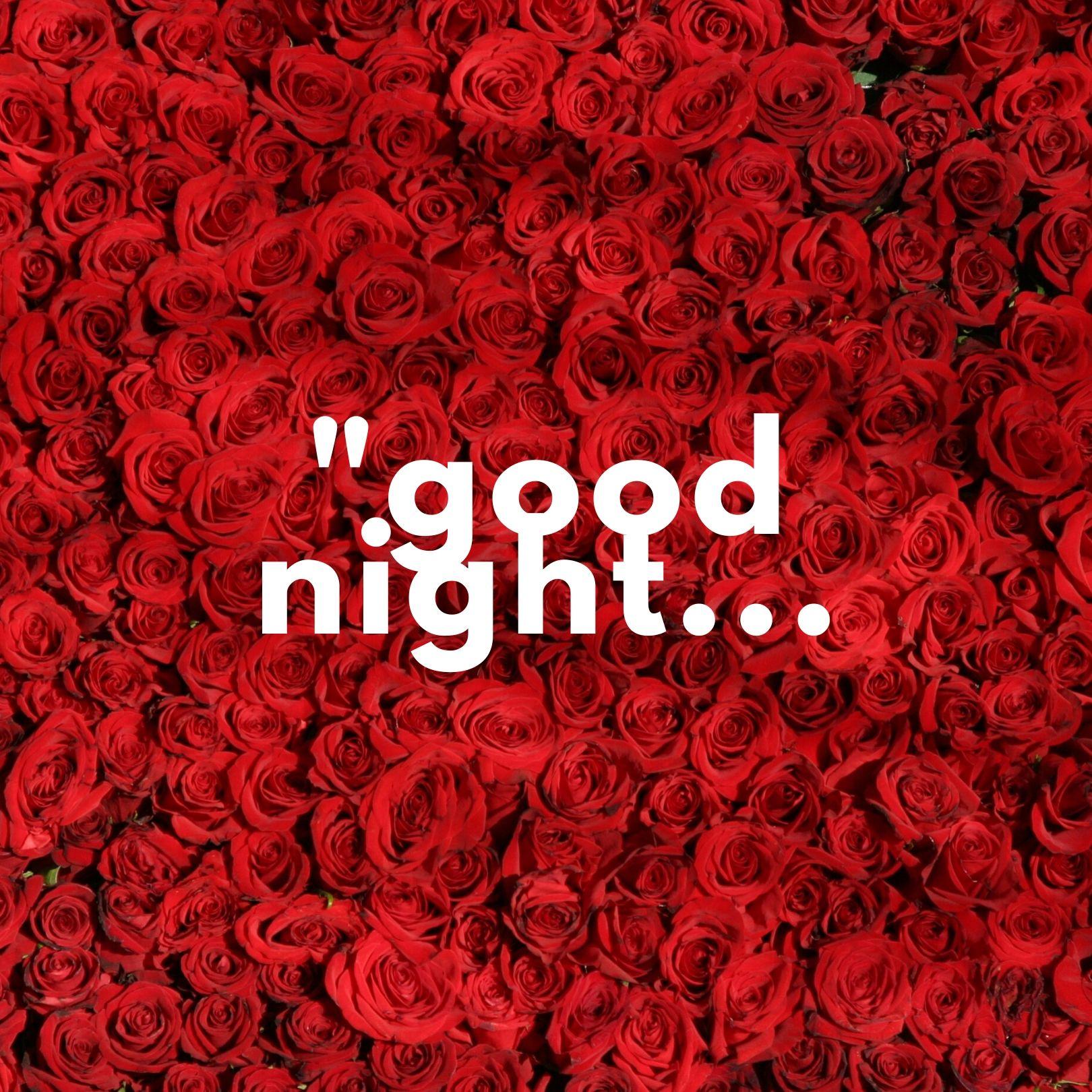 Good Night rose photo hd full HD free download.