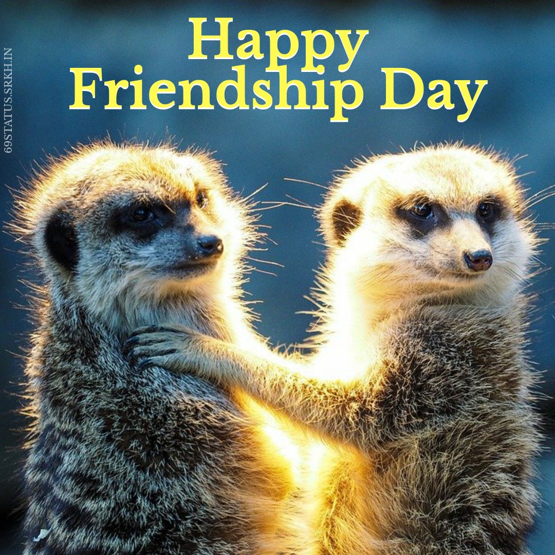 Happy Friendship Funny Images Download full HD free download.