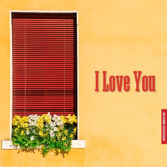 I Love You flowers images hd