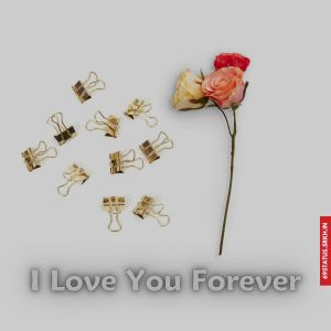 I Love You forever images full HD free download.