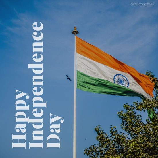 Independence Day Celebration Images