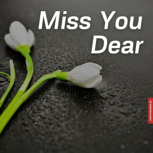 Miss you dear images full HD free download.