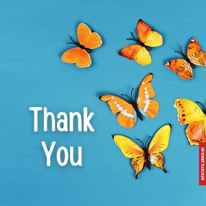 Thank You Images with Butterflies HD full HD free download.