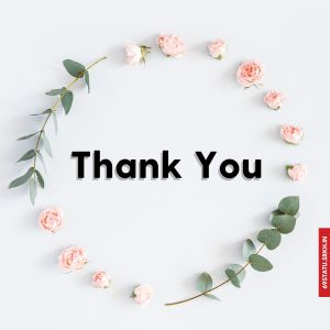 Thank You Images with Roses full HD free download.