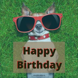Happy Birthday Images Funny full HD free download.