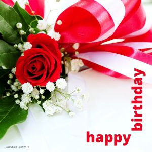 Happy Birthday Rose Images full HD free download.