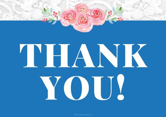Thank You Card Images – Thank You