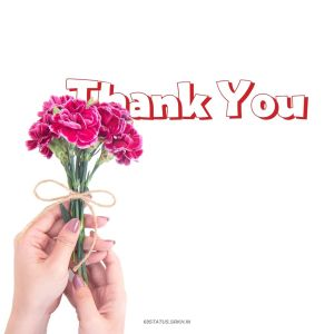 Thank You Images Pics full HD free download.