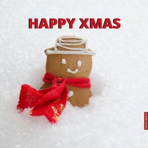 Christmas Day Image full HD free download.