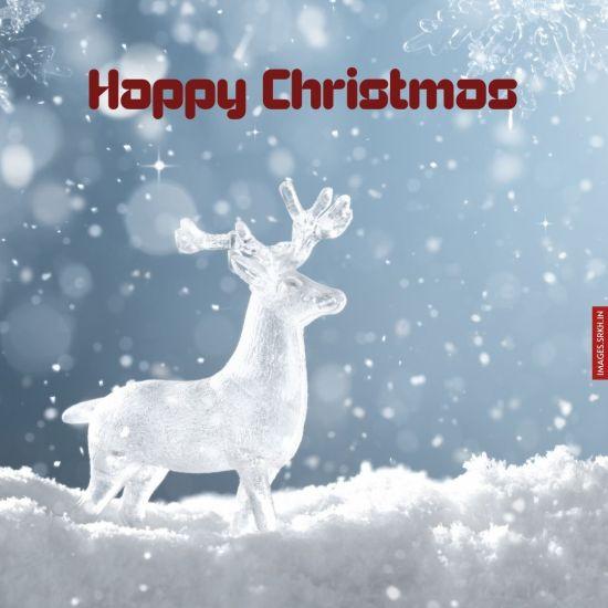 Christmas Image Free Download