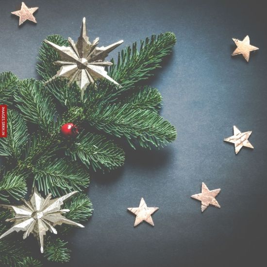 Christmas Star Images