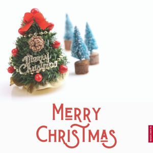 Christmas Trees Images full HD free download.