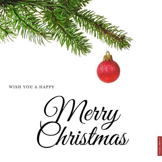 Christmas Wishes Image