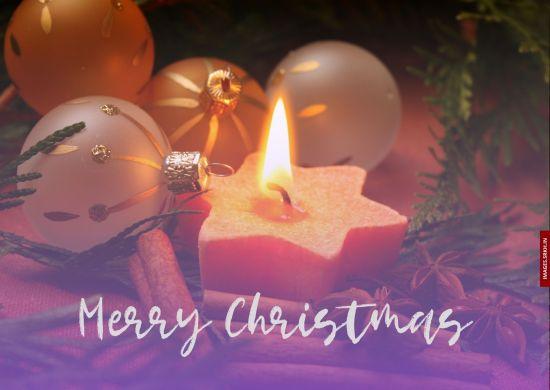 Images Of Christmas Celebration