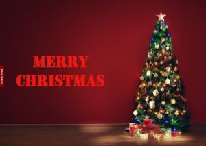 Xmas Tree Images Free full HD free download.