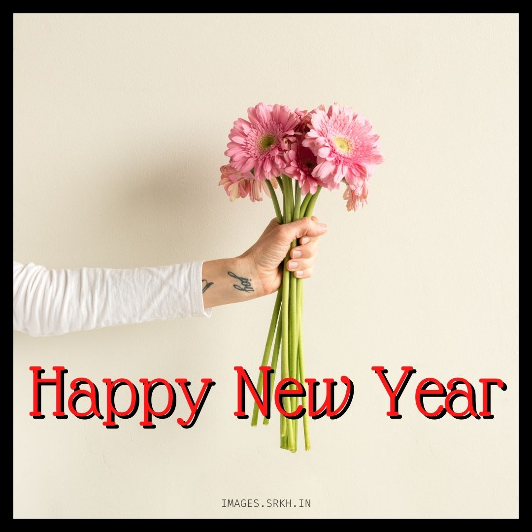 Wish Happy New Year full HD free download.