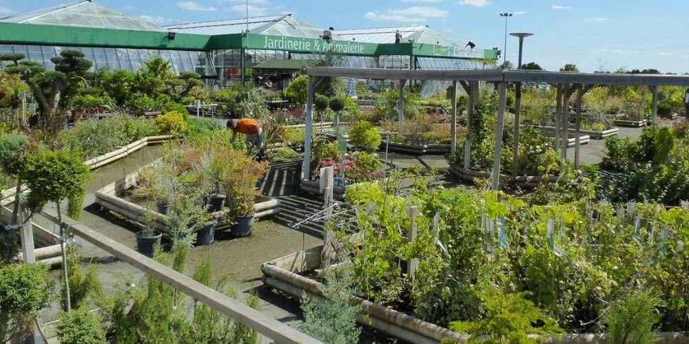 Jardi Leclerc Tout Pour Le Jardin Et Bien Plus Publi Info