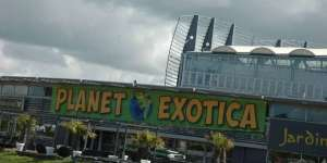 Planet Exotica ouvre