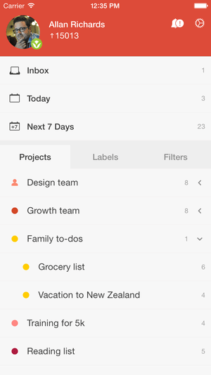todoist project