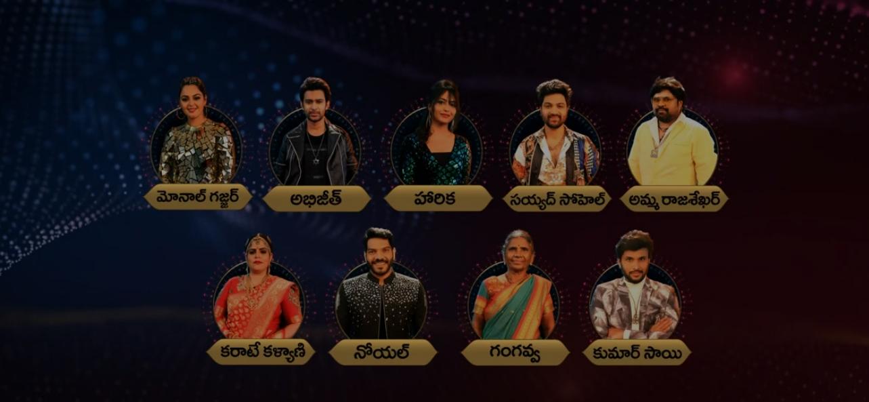igg Boss 4 Telugu Nominations List – Elimination Week 2