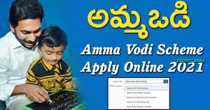 amma vodi apply online