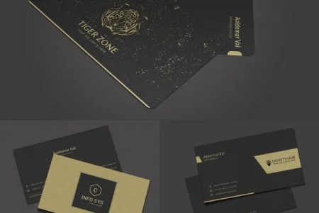 40  Excellent Black Business Cards to Download   Free   Premium     Black and Gold PSD Business Card Vol 1  gold and black business card