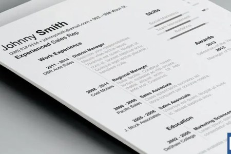 19  Resume Examples   PDF  DOC   Free   Premium Templates history resume template