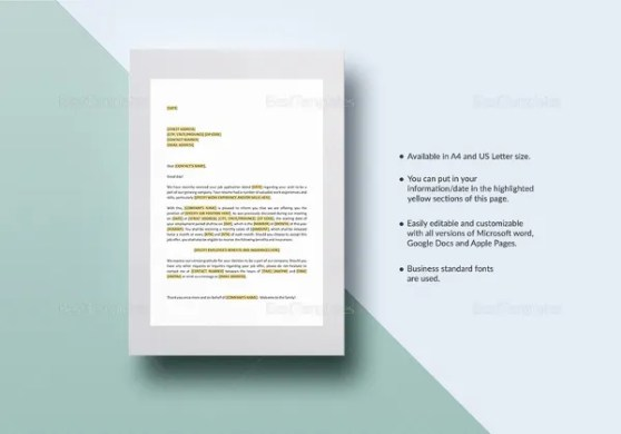 408  Letter Templates     Free Sample  Example  Format Download     Employment Offer Letter Template