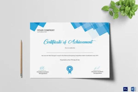 28  Professional Certificate Templates   DOC  PDF   Free   Premium     professional achievement certificate template  Download Now