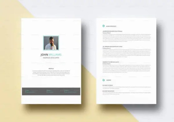 Android Developer Resume Templates     14  Free Word  Excel  PDF     Professional Android Developer Resume Template