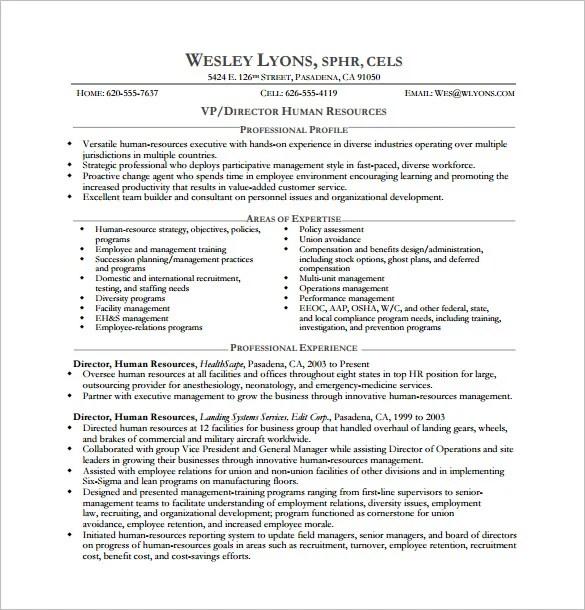 Executive Resume Templates Word Resume Sample