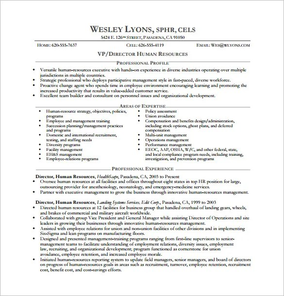 Executive Resume Templates Word