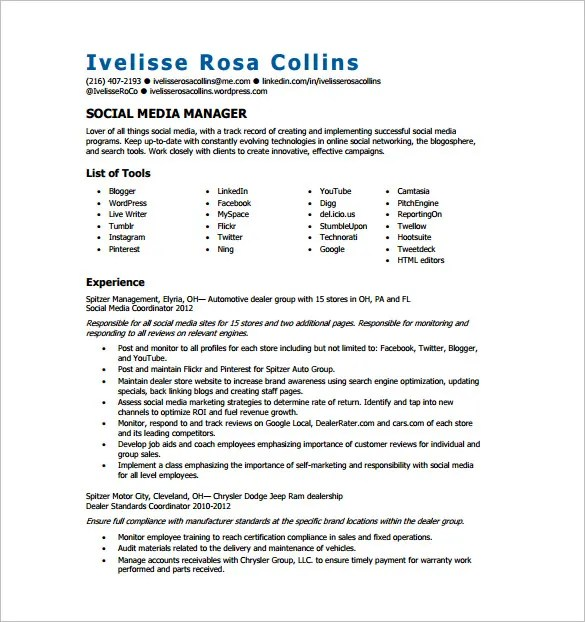 seo executive resume template 12 free word excel pdf format