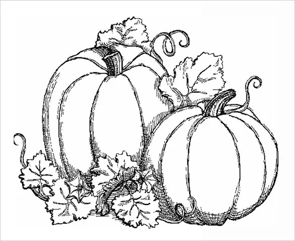 fall coloring pages # 72