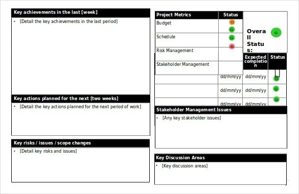 Project Update Report Template. Project Dashboard With Status