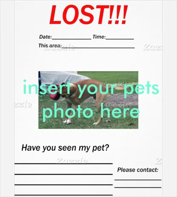 Lost Pet Template lost animal poster writing frames and printable – Missing Pet Template