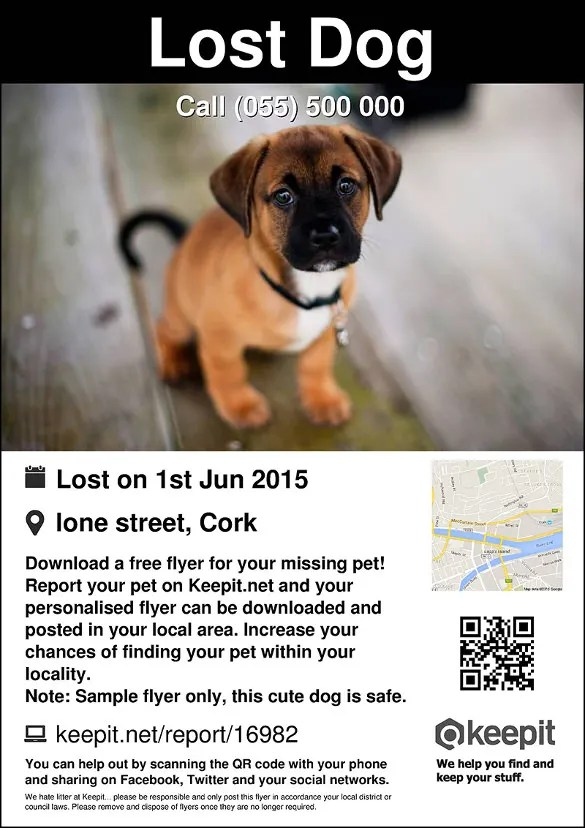 lost dog poster template