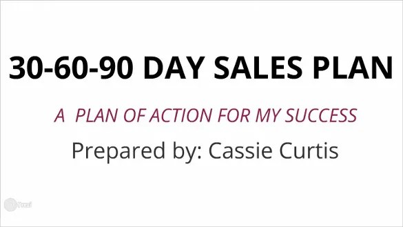 90 Day Plan Template. Professional Sales Presentation Showing 0714