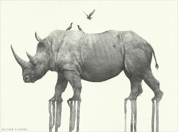 Elephant Drawings Creative