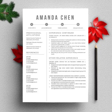 26  Word Professional Resume Template   Free Download   Free     Creative   Stylish Professional Resume Word Template
