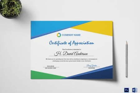 Certificate of Appreciation Template   24  Free Word  PDF  PSD     Easy to Edit Company Appreciation Certificate