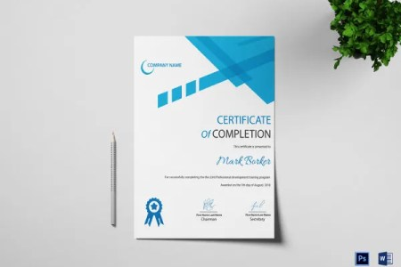82  Free Printable Certificate Template   Examples in PDF  Word     printable certificate of completion template